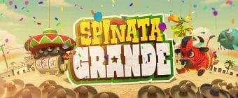 Spinata Grande Logo